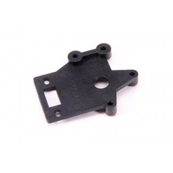 Amb & Switch Mount (1Pc)