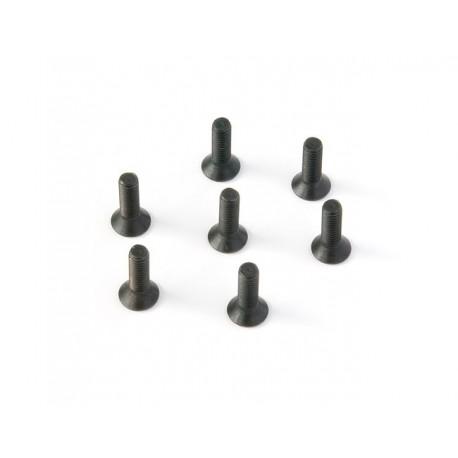 Flat Head Screw 3X10 (20pcs)