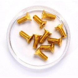 Flat Head Screw 3X8 Gold Alu. (10Pcs)