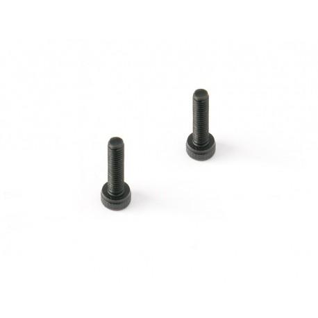 Cap head screw 2.5X25 (20pcs)