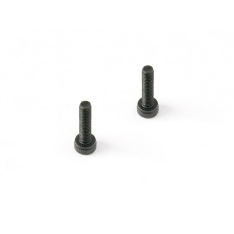 Cap Screw 3X6 (20pcs)